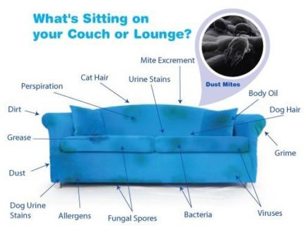upholstery cleaning in croydon area